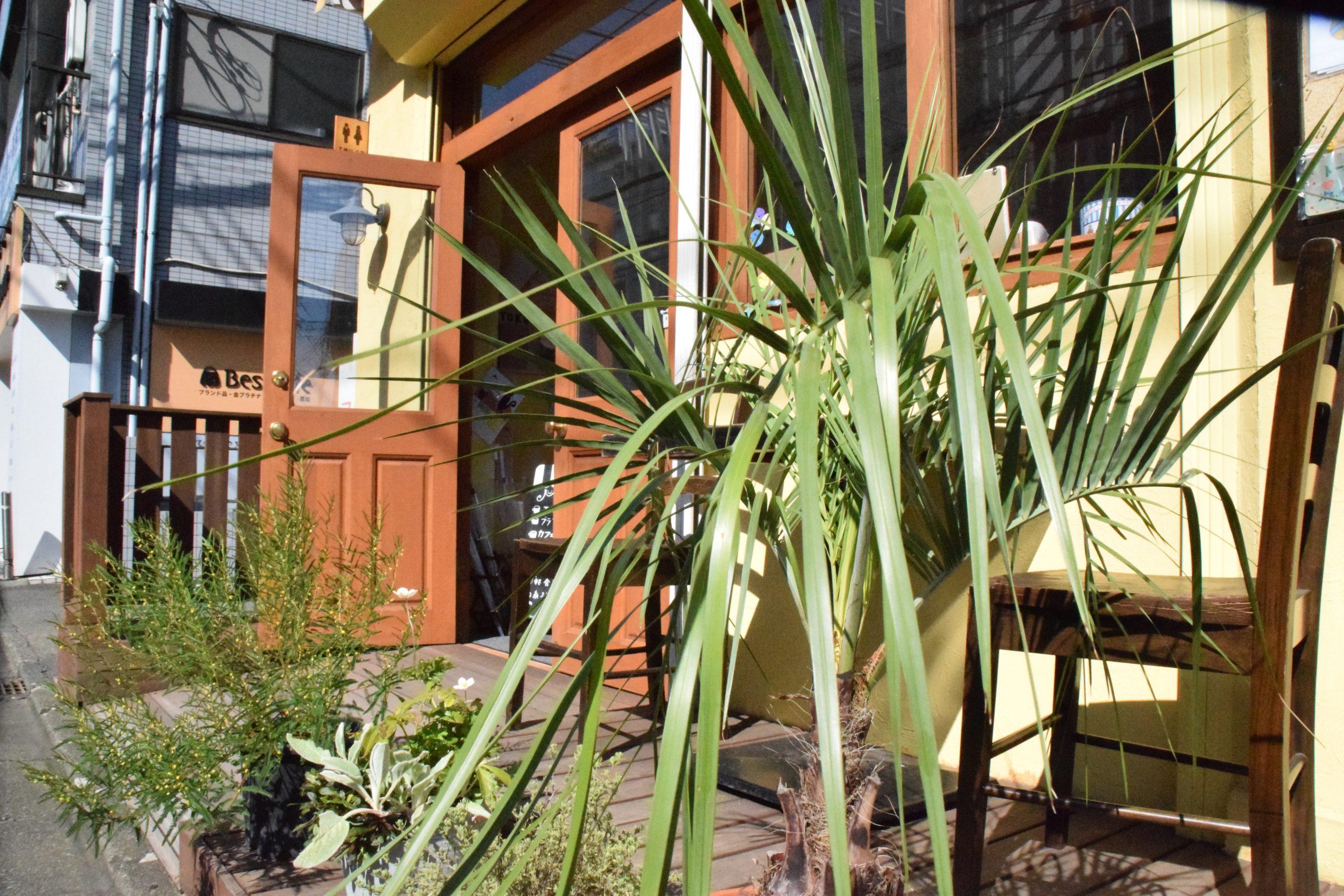 植物がおかれた入口